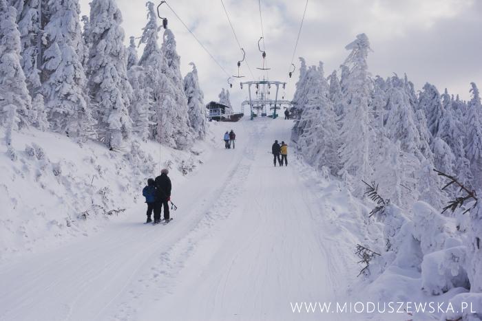 1 (17)-sesja-na-sniegu-warszawa