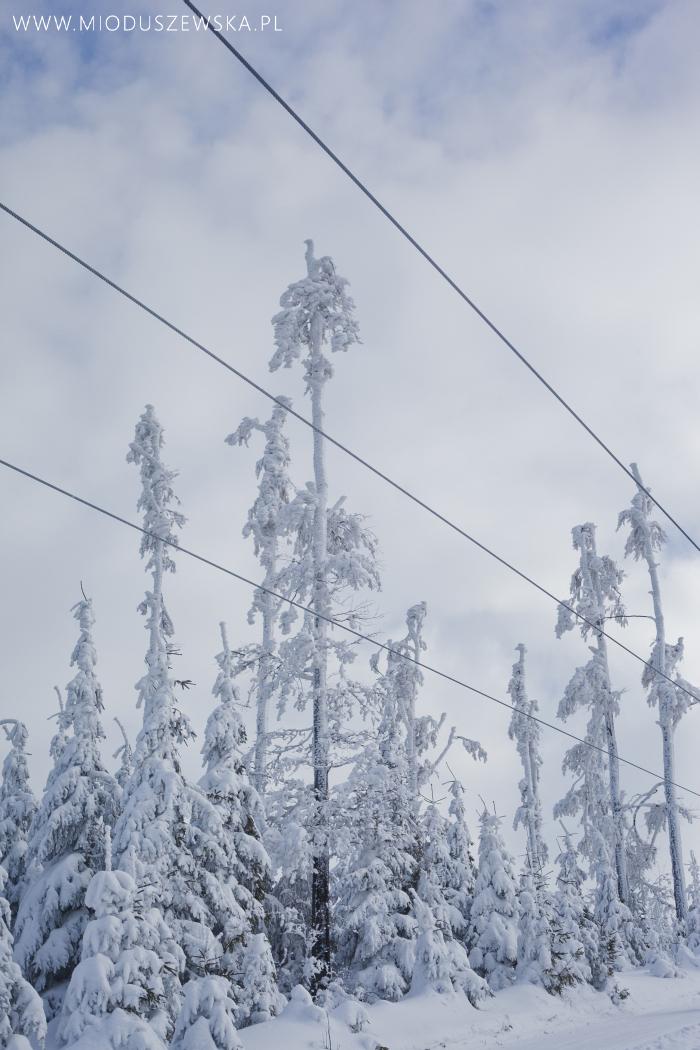 1 (6)-zimowe-krajobrazy-zdjecia